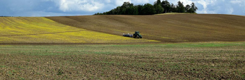 Futuro del Sector Agroalimentario