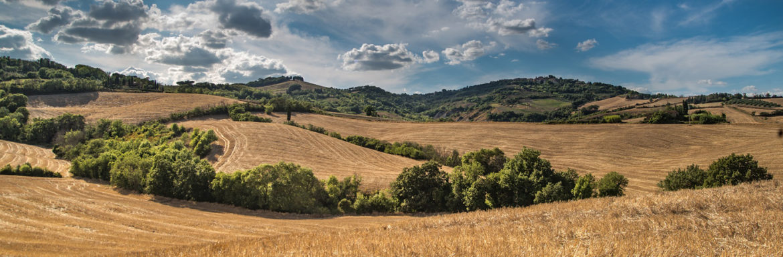 Como preparar el terreno antes de sembrar el grano
