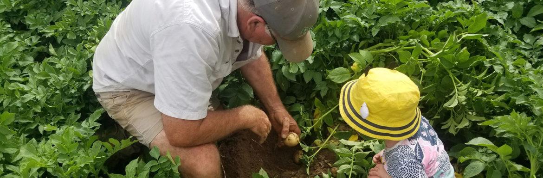 Qué es la agricultura para un niño