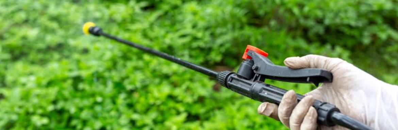 Contradiccion uso cloripifos pesticida