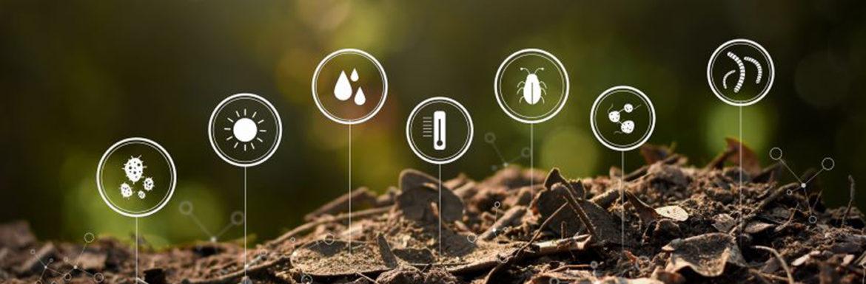 Como combatir la degradacion del suelo
